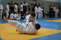 Teaserbild Drachen-Cup 208 in Gera